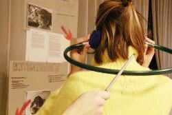 Kreativsein und forschend Lernen in der Lernwerkstatt